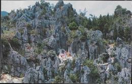 CINA - FUXI STONE FOREST -VIAGGIATA 1990 FRANCOBOLLO ASPORTATO - Chine