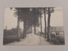 NEERPELT : Weg Op Broeseind - België