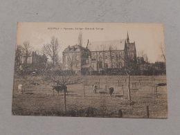NEERPELT : Panorama Collège - België