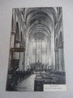 TONGRES : Intérieur De La Cathédrale - België
