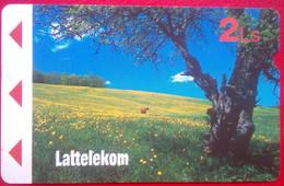 2 Ls Tree - Latvia