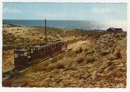 33 - Cap Ferret       Le Petit Train - Frankreich