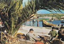 Postcard Malta Marsaxlokk Fishing Village With 1988 Olympic Stamp My Ref B22218 - Malte