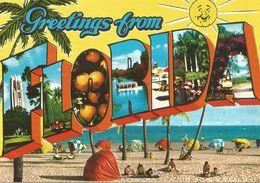 Greetings From FLORIDA.  (scan Verso) - Etats-Unis