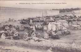Ancienne Carte Postale Maroc - Oudjda - Derrière Les Remparts  (Caravane De Chameaux En Station) - Autres