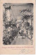 Herckenrode Bloemengalerij 1904 - Hasselt