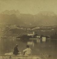 Stéréo 1860-70 . Haute-Savoie . Château De Duingt . - Stereoscopic
