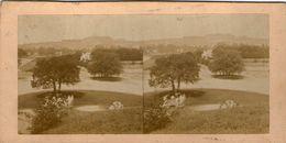 (59)  Photo Originale Sur Carton Fin 1800 Paris Bois De Boulogne 16cm X 8.5cm (Bon Etat) - Photos Stéréoscopiques