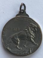 Médaille. P Theunis. Liège-Walhein-Nieuport 1914. De Tous Les Gaulois Les Plus Braves Sont Le Belges. - Professionals / Firms