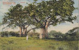 """E04- """"SOMALIA ITALIANA - ESPOSIZIONE 1911 """" Da Mogadiscio A Milano Con 5 + 5 Cent In Sovrastampa  Leggi.... - Somalia"""