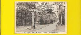 Forêt De PONTARME Carrefour Poteau Des Vignettes (Delboy) Oise (60) - France