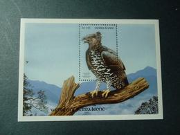 SIERRA LEONE  MINT  STAMPS BIRDS  SHEET    1990 - Pájaros