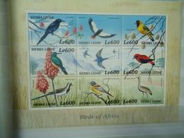 SIERRA LEONE   MINT  STAMPS BIRDS  SHEET   2000 - Oiseaux