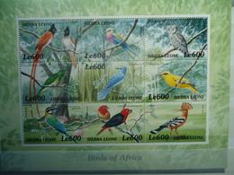 SIERRA LEONE   MINT  STAMPS BIRDS  SHEET   2000 - Vögel