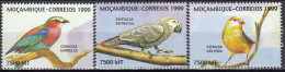 Moçambique 1999 (MNH) - Lilac-breasted Roller / Grey Parrot / Orange-breasted Waxbill - Verzamelingen, Voorwerpen & Reeksen