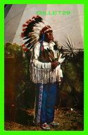INDIENS DE L'AMÉRIQUE -  ARAPAHOE CHIEF - CHEF INDIENS -  SCENIC ART - - Indiens De L'Amerique Du Nord