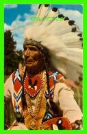 INDIENS DE L'AMÉRIQUE - INDIAN CHIEF - SCENIC ART - - Indiens De L'Amerique Du Nord
