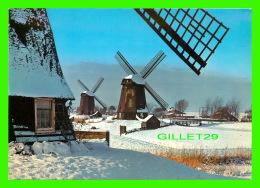 MOULINS À VENT - HOLLAND DE SCHERMER - WIND-MILLS IN THE SNOW OF WINTER - - Moulins à Vent