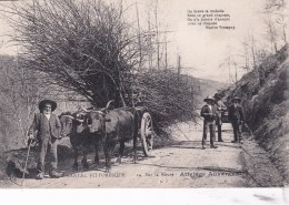 15 - Cantal -   En Auvergne  - Sur La Route -  Attelage Auvergnat - Agriculture - France