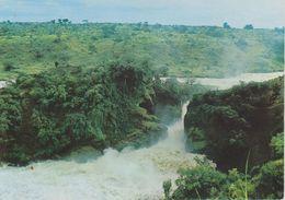 Uganda - Cascate Murchison - Uganda