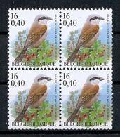 BELGIE * Buzin * Nr 2885 * Postfris Xx * FLUOR  PAPIER - 1985-.. Vögel (Buzin)