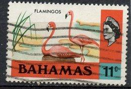 Bahamas 1971 11c  Flamingos  Issue #322 - Bahamas (...-1973)