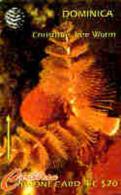 DOMINICA : 007K EC$20 Christmas Tree Worm USED - Dominica