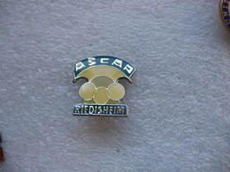 Pin's Club De Billard De L'ASCAP De Riedisheim - Billiards