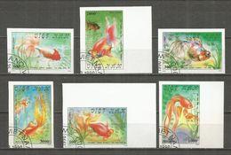 Vietnam 1990 , Used Stamps , Set  IMPERF. FISH - Vietnam