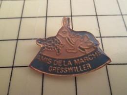 Pin613c Pin's Pins / Beau Et Rare / ANIMAUX : LIEVRE TORTUE AMIS DE LA MARCHE GRESSWILLEr - Animals