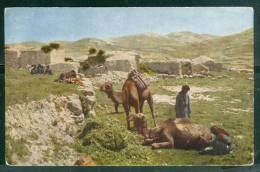 Village De Natives ( Cpa écrite D'Alep En 1922 )  Um12 - Syrië