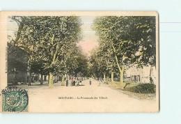 MONTLUEL - La Promenade Des Tilleuls-  Animée Et Colorisée - 2 Scans - Montluel