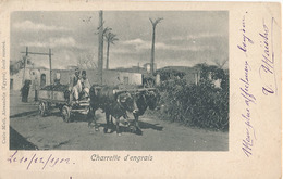 CHARETTE D'ENGRAIS (ATTELAGE) - Unclassified