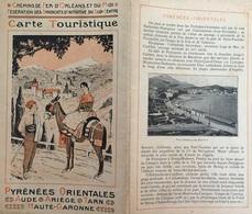 FR66 PO - Carte Des Chemins De Fer Du Midi - Carte  Dépliée 65 * 52 - Ligne électrique De Cerdane - Voir Scans - Belle - Cartes