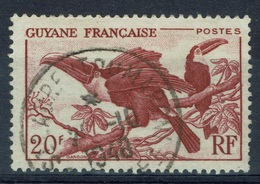 French Guiana, Bird, Toucan, 20f, 1947, VFU Superb Postmark Saint-Laurent-du-Maroni - Lattaquie (1931-1933)