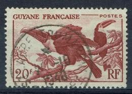 French Guiana, Bird, Toucan, 20f, 1947, VFU Superb Postmark Saint-Laurent-du-Maroni - Oblitérés