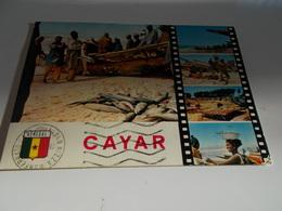 B676   Cayar Senegal Leggera Abrasione Al Retro - Senegal