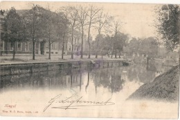 AMSTERDAM - Singel - ( Timbre Décollé) - Amsterdam