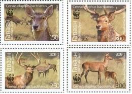 Tadschikistan 2009 MNH** Mi.Nr. 527-530 A WWF Nature Protection - Tajikistan