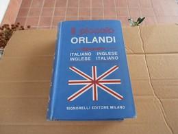 Il Piccolo Orlandi Dizionario - Dizionari