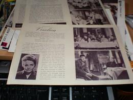 Kino Program Veselica - Posters