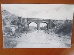 ORLEANSVILLE . PONT DE TSIGAOUTH - Algérie