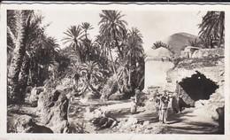 MAROC---mini Photo éditeur--env. De FES--marabout De Sidi Harassem Et La Source --voir 2 Scans - Photographie