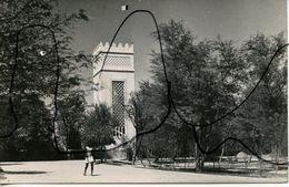 CPSM. PF. SOUDAN.  GAO. Jardin De La Residence.   ARIS BANDOL - Sudan