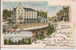 L74A435 - Gruss Vom Hotel Altenberg - Gustav Michel N°3719 - Carte Multi-vues Et Précurseur - Altenberg