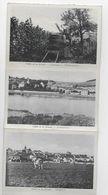 Vallée De La Moselle 10 Cartes Accrochées Ensemble Vendanges Schengen Remich Stadtbredimus Ehnen Wormeldange Ahn - Non Classés