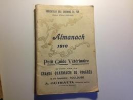 TOULOUSE, Pharmacie Du Progrès,ALMANACH, 1910, Indicateur Des Chemins De Fer, Petit Guide Vétérinaire - Calendars