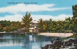 Bermuda Somerset Cambridge Beacges - Bermuda