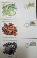 L) 1979 GRENADINES OF ST VINCENT, IGUANA, REPTILE, TORTOISE, PUSSUM, NATURE, ANIMALS, FAUNA, WORLD WILDLIFE FUND, FDC - St.Vincent & Grenadines