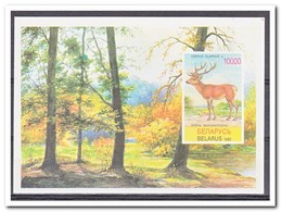 Wit Rusland 1995, Postfris MNH, Animals, Woods - Wit-Rusland